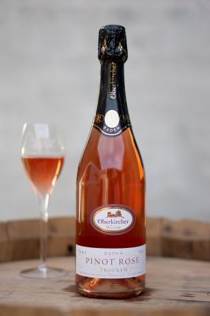 Oberkirch Pinot noir rosé sekt