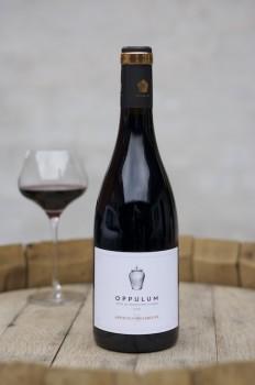 Oppulum2018-20